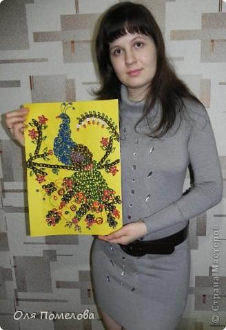 """20 часов не ушли коту под хвост))))) Это моя первая работа, """"Жар птица"""", вдохновлялась работами с этого сайта.  фото 2"""