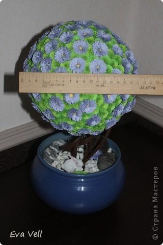 Вот такое первое дерево счастья получилось у меня... Сделала в подарок бабушке на ДР. Все модули (листики и цветочки) сделаны в технике квиллинг. Получилась большая трудоемкая работа - делала около 2-ух месяцев.  фото 3