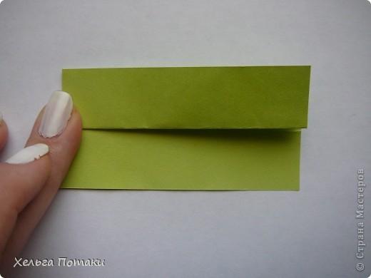 Баккишар как и электра тоже может стать основой для цветочной кусудамы.  фото 5