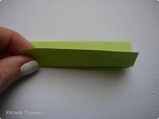 Баккишар как и электра тоже может стать основой для цветочной кусудамы.  фото 6