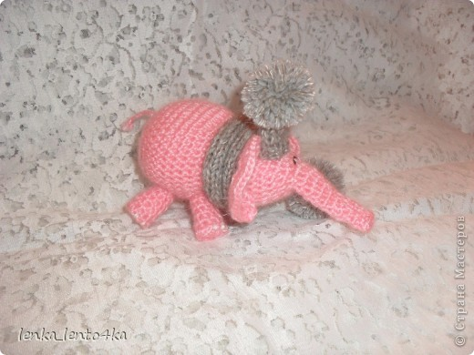 Слон фото 2