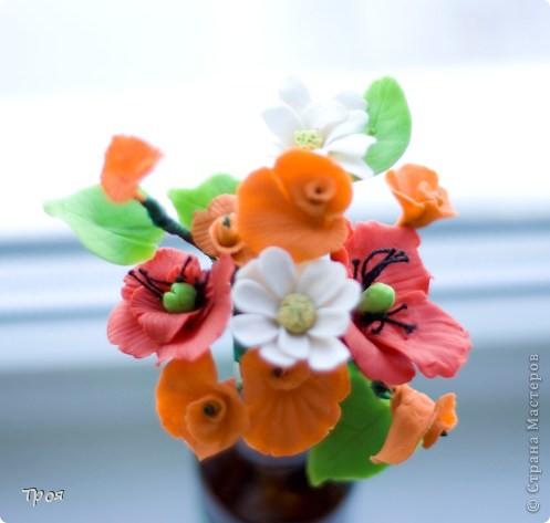 Маки, ромашки и еще какие-то невиданные цветы:) фото 1