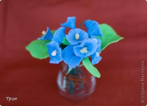 Маки, ромашки и еще какие-то невиданные цветы:) фото 3