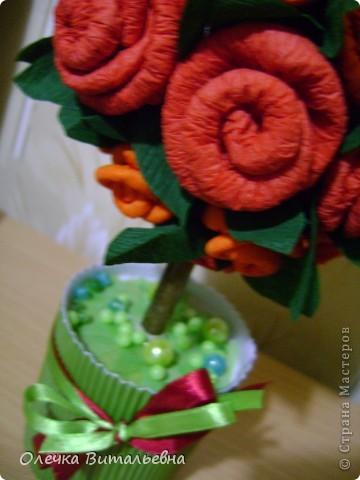 """Хотела сделать мини-деревце (не только в смысле размера, но и в смысле денежных затрат, так сказать """"мало бюджетный"""" вариант). Итак: основа шарика - газетный ком, перетянутый нитками, листва (торцеванием) - крепбумага, плоды - старые деревянные пуговицы """"на ножках"""", подкрашенные лаком для ногтей, ствол - цветной карандаш, обвитый коричневой атласной ленточкой, ну и стеклянная  баночка из-под крема. Ствол укрепила в банке с помощью строительного гипса. Высота изделия - около 20 см. Сейчас думаю, как и чем задекорировать  низ (банку). фото 6"""