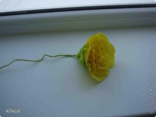 Получила заказ сделать желтые пышные цветы для школьного ансамбля. Поэтому эти два условия и старалась выполнить. Только потом стали думать, какие цветы получились. Пришли к выводу, что это полная мальва. фото 14