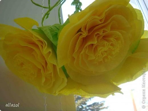 Получила заказ сделать желтые пышные цветы для школьного ансамбля. Поэтому эти два условия и старалась выполнить. Только потом стали думать, какие цветы получились. Пришли к выводу, что это полная мальва. фото 1