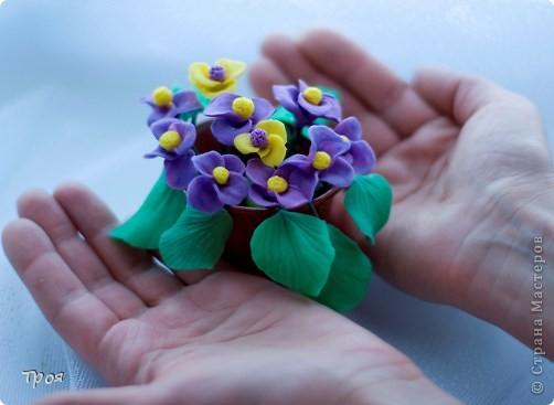 Маки, ромашки и еще какие-то невиданные цветы:) фото 5