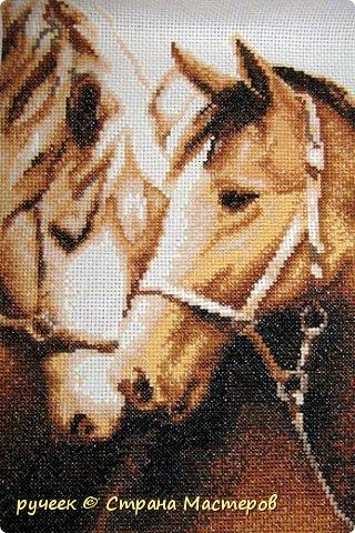 """одна из моих любимых картин...называется """"преданность""""...набор из фирмы """"Золотое руно""""... фото 1"""