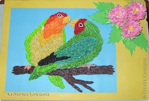 у кого-то увидела попугаев, захотелось тоже сделать-вот что получилось! фото 1