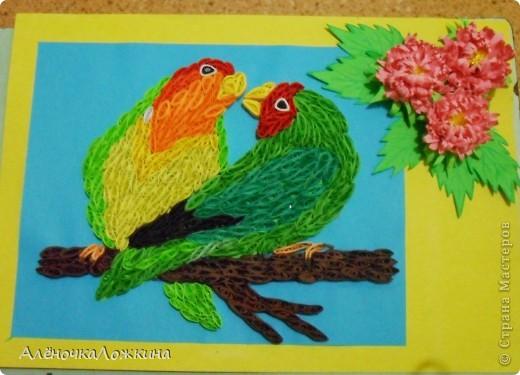 у кого-то увидела попугаев, захотелось тоже сделать-вот что получилось! фото 2