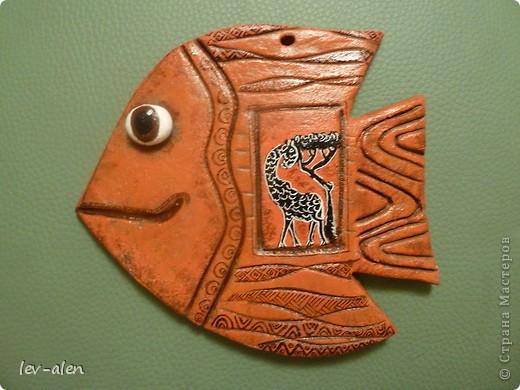 Рыбка Африка фото 3