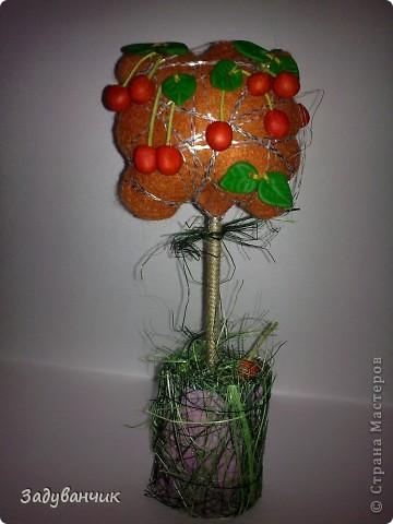 Оранжевые деревца фото 6