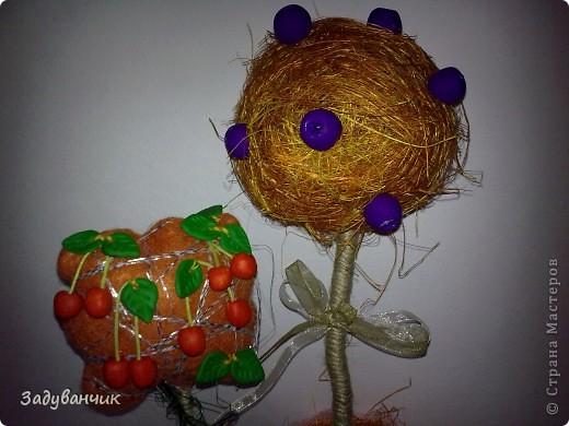Оранжевые деревца фото 3