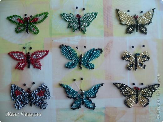 Понравилось мне в последнее время плести бабочек, вот что получилось: фото 2