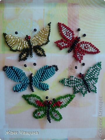 Понравилось мне в последнее время плести бабочек, вот что получилось: фото 1