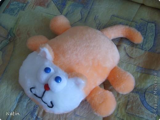 Коты не любят спать в углу, Ни на ковре, ни на полу… Места, достойные кота, - Диван. Кушетка и тахта!  А.Усачёв фото 1