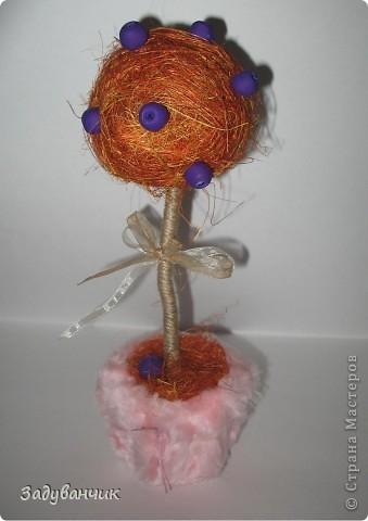Оранжевые деревца фото 4