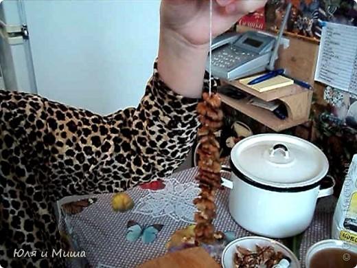 Чурчхе́ла (груз. ჩურჩხელა, тур. Pestil Cevizli Sucuk — дословно: суджук с грецкими орехами) — восточная сладость из нанизанных на нитку орехов в загустевшем сиропе на основе виноградного сока. Отличается высокими питательными свойствами благодаря большому содержанию глюкозы и фруктозы (от 30 до 52 %), растительных жиров, белков, органических кислот (1,1-2 %), азотистых и фенольных веществ, витаминов. фото 4