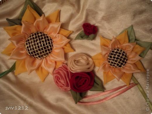 Клумба цветов! фото 1