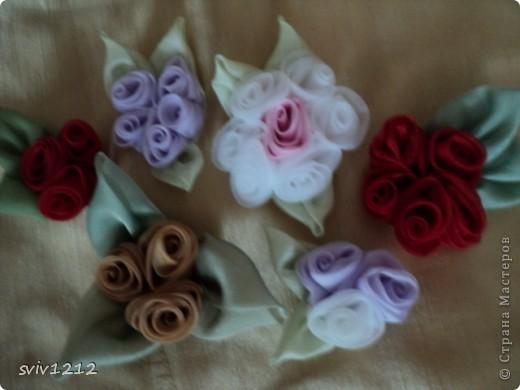 Клумба цветов! фото 5