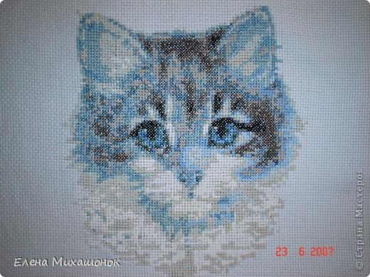 Вот такие подушечки для нашей Катюшечки))) фото 3