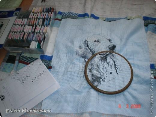 Вот такие подушечки для нашей Катюшечки))) фото 2