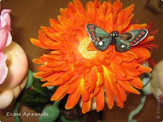 Цветочная сказка для взрослых и детей фото 8
