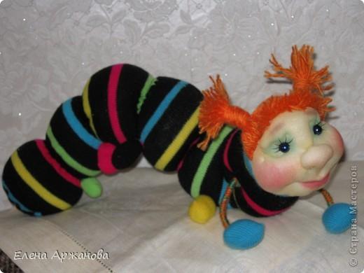 Здравствуйте! Я гусеничка Июлька!Почему Июлька? Да потому, что такие красивые гусеницы появляются в июле! Я только что вылупилась из яичка! фото 3