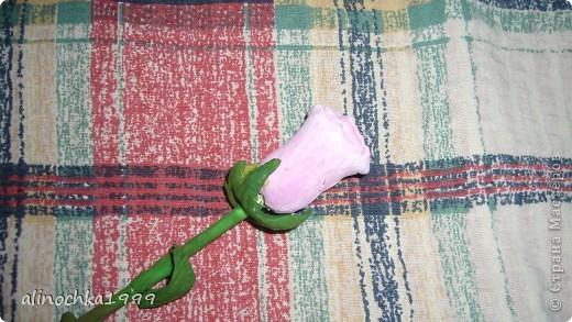 мои первые розы из холодного фарфора фото 4
