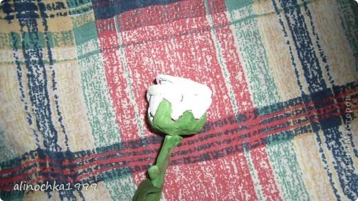 мои первые розы из холодного фарфора фото 3