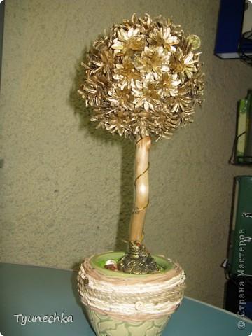 """Моё самое первое """"Дерево СЧАСТЬЯ"""", делала сестре на свадьбу вместо конверта с деньгами (сам конверт был привязан к стволу дерева у основания)   фото 3"""