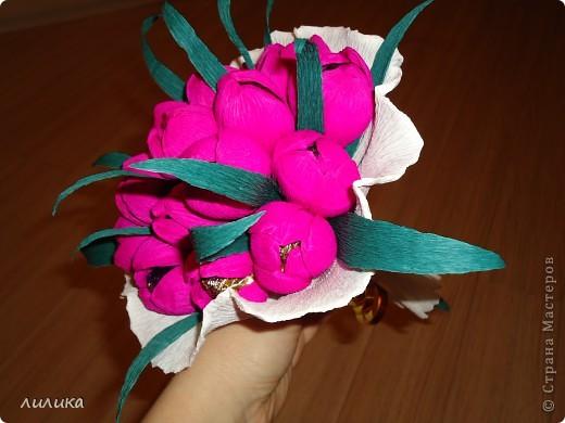 Белые тюльпаны. фото 4
