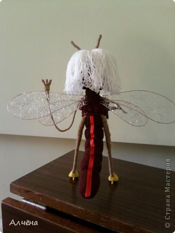 Попрыгунья стрекоза,лето красное пропела!!!!!! фото 5