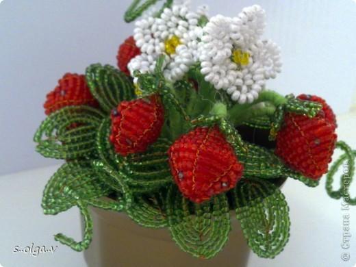 наконец-то и у меня созрели ягодки.... фото 2