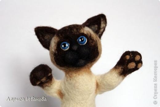 Вот такие сиамочки  меня получились... Это я насмотрелась на кошечек Елены Смирновой. Мне, конечно, до нее очень далеко, но начало положено))). Кроме того, я очень люблю кошек. Так что делались они с большим удовольствием))) фото 9