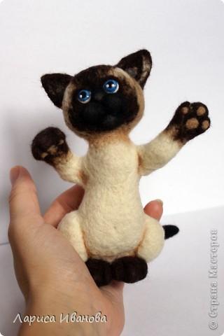 Вот такие сиамочки  меня получились... Это я насмотрелась на кошечек Елены Смирновой. Мне, конечно, до нее очень далеко, но начало положено))). Кроме того, я очень люблю кошек. Так что делались они с большим удовольствием))) фото 2