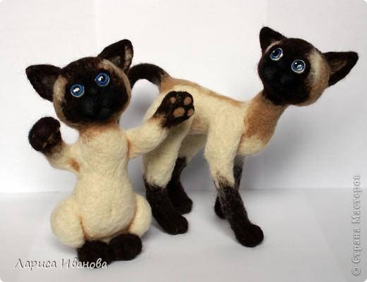 Вот такие сиамочки  меня получились... Это я насмотрелась на кошечек Елены Смирновой. Мне, конечно, до нее очень далеко, но начало положено))). Кроме того, я очень люблю кошек. Так что делались они с большим удовольствием))) фото 1