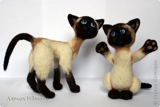 Вот такие сиамочки  меня получились... Это я насмотрелась на кошечек Елены Смирновой. Мне, конечно, до нее очень далеко, но начало положено))). Кроме того, я очень люблю кошек. Так что делались они с большим удовольствием))) фото 8