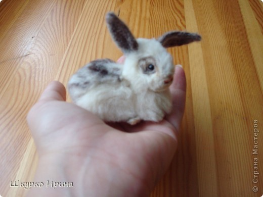 Вот мой первый опыт-кролик. фото 1