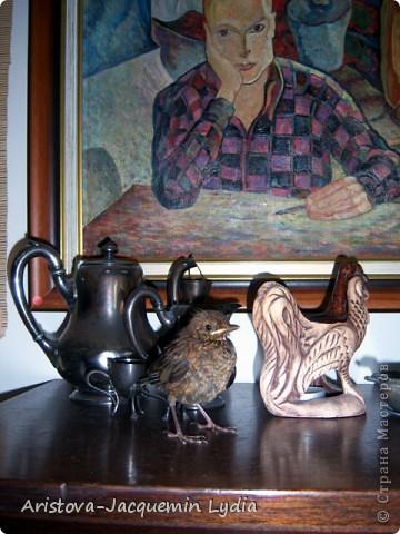 Озеро, дерево и птица (дрозд — птица певчая ) — символы творчества, надежда на слияние с миром и возвращение чего-то утраченного. фото 6
