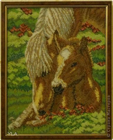 Лошадки вышитые бисером