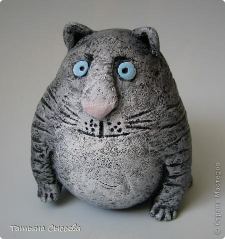 Если бы бультерьер был котом, то выглядел бы он приблизительно так... фото 1