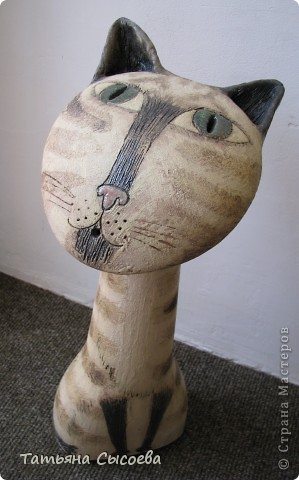 Если бы бультерьер был котом, то выглядел бы он приблизительно так... фото 7