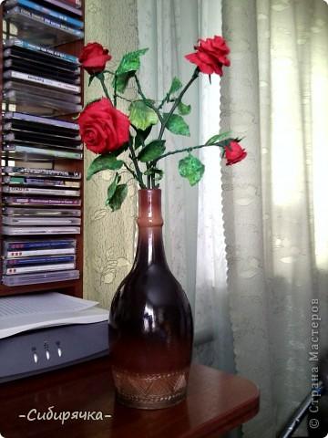 Кто сказал, что в Сибири не растут розы? Еще как растут! фото 1