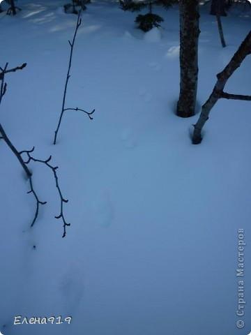 ... мы её не просто ловили, а ещё и соревновались: кто больше поймает :)) фото 14