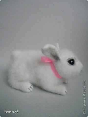 Кроля фото 3