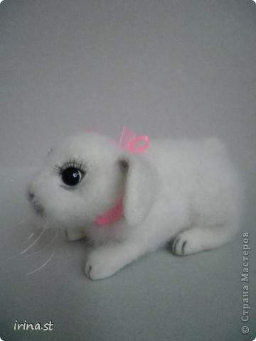 Кроля фото 4