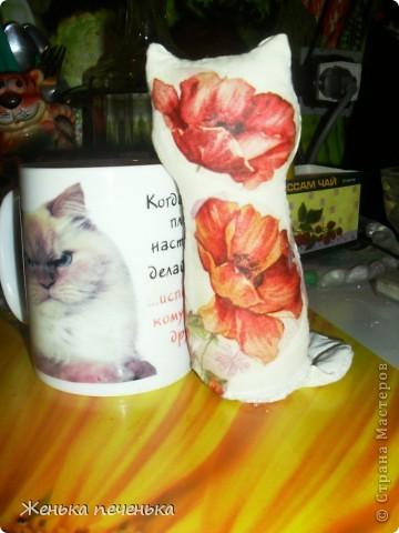 Маленькая кошечка в маковых цветочках фото 3