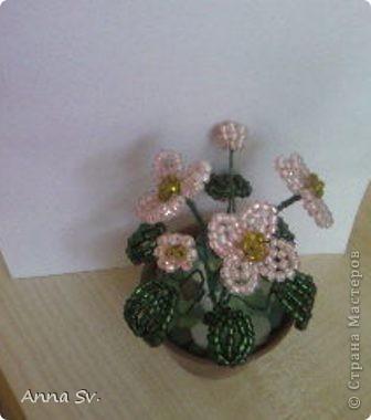Цветы в горшочке   фото 2