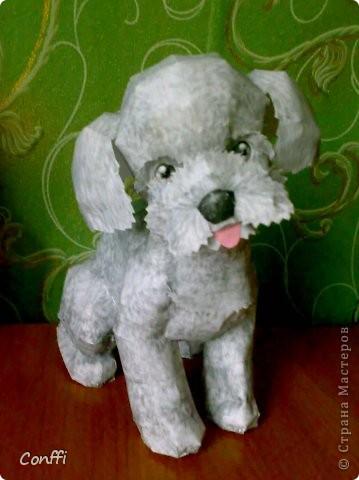 Мой щеночек. фото 1